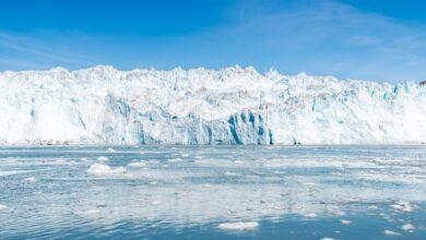 Photo of Paseo en barco por el glaciar Eqi: un viaje al borde del mundo
