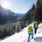 Los excursionistas en mochilas en la nieve