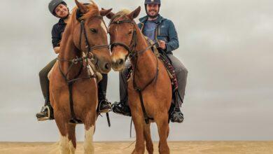 Photo of De vuelta a la silla: montar a caballo en Swakopmund, Namibia