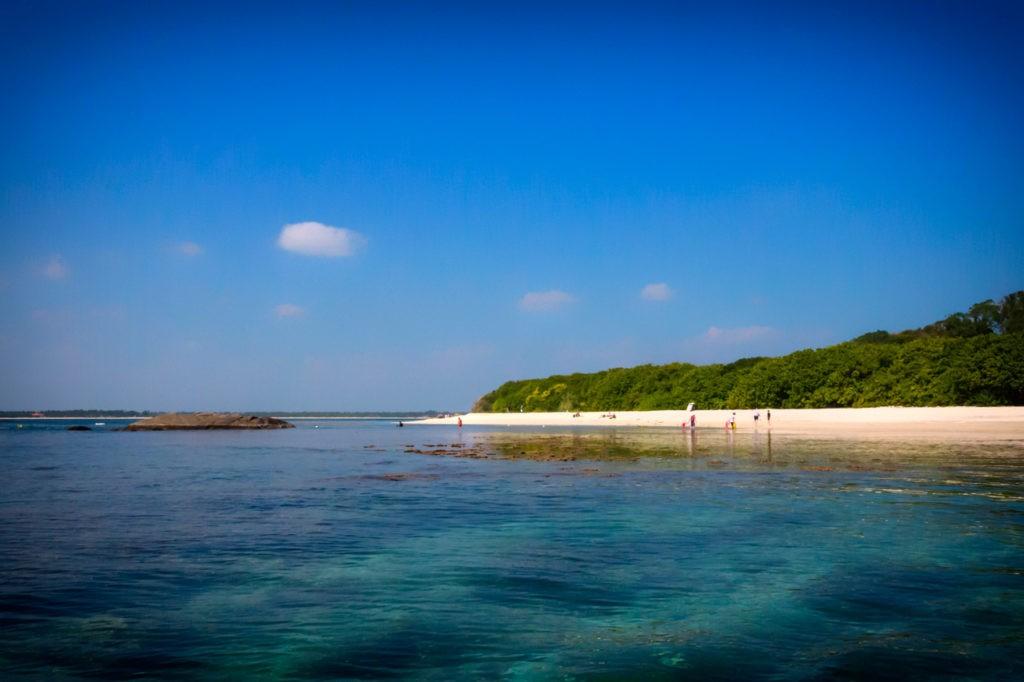Cosas para hacer en la isla de Trincomalee-Sri-Lanka-paloma
