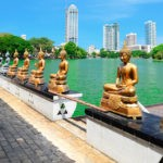 Calm-amid-the-chaos-in-Colombo-Sri-Lanka-FEATIMG