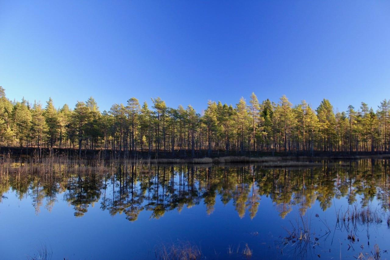 mejor país para el senderismo - suecia-2