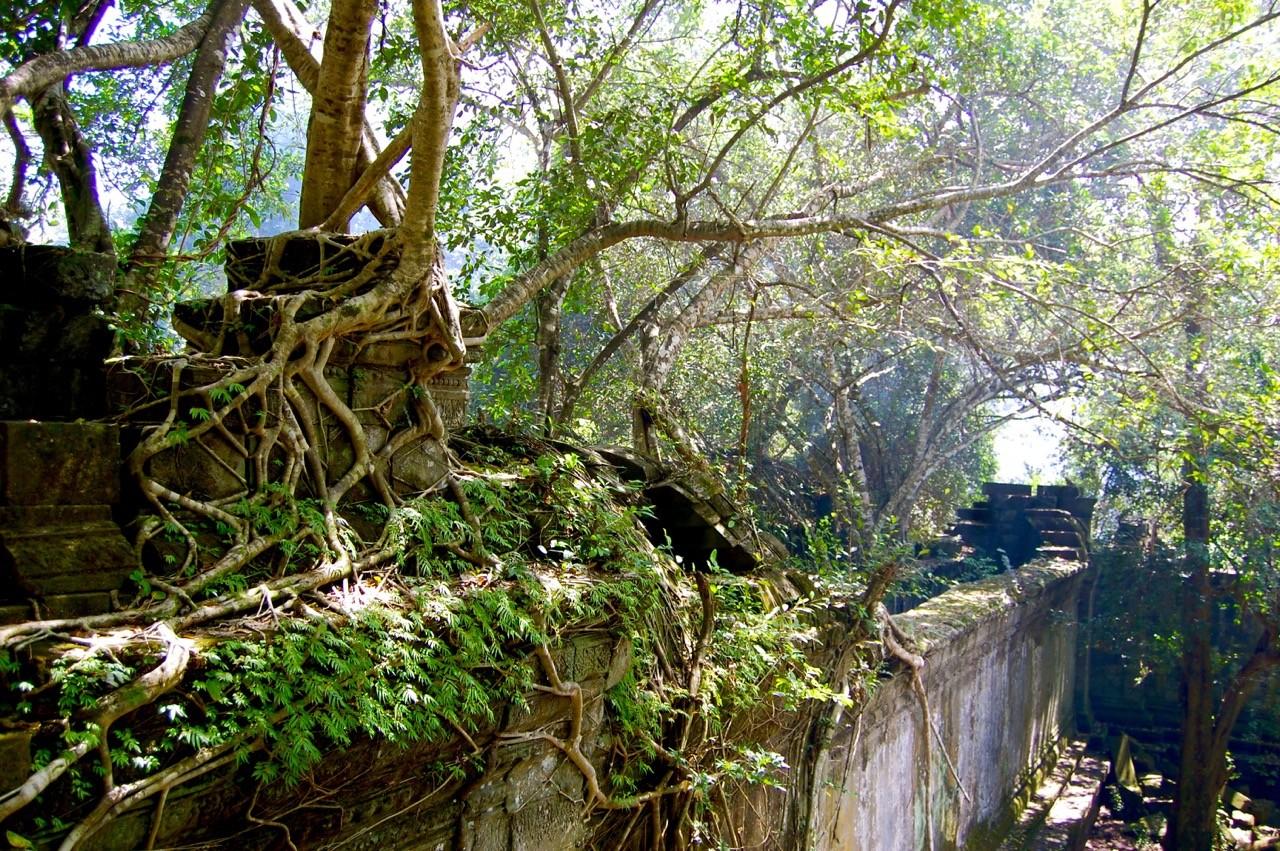 el mejor momento para visitar Angkor Wat: Beng Mealea