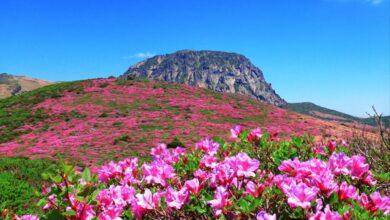 Photo of Las mejores caminatas en Corea del Sur: 8 impresionantes senderos