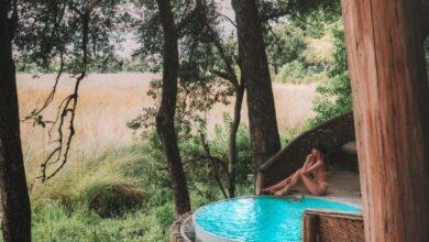 Photo of Registro de entrada en Sandibe Safari Lodge, Botswana