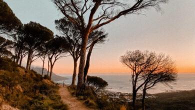 Photo of Las mejores caminatas al atardecer en Ciudad del Cabo