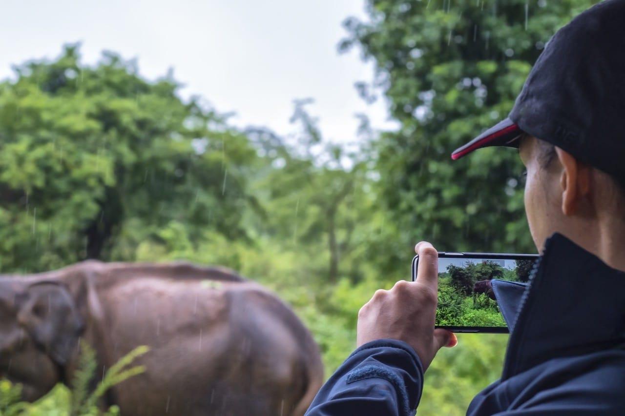 Consejos de fotografía Safari lente - 1