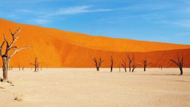 "Photo of ""Esto es África"": ¿mantra útil o prejuicio feo?"