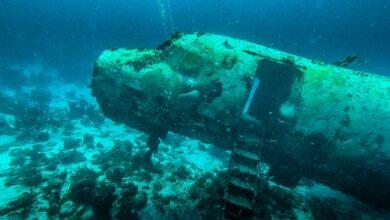 Photo of Bucear en los restos del avión Sonesta en Aruba