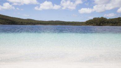 Photo of Paraíso encontrado: excursión de un día a la isla Fraser, Australia