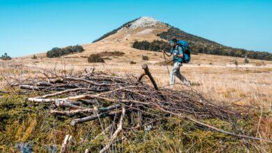 Photo of Una guía para principiantes para el senderismo en el Highlander Velebit