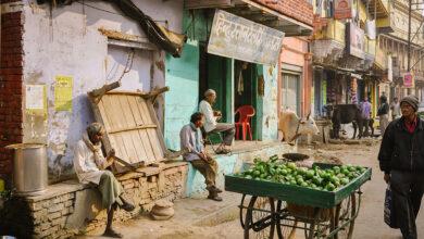 Photo of 15 consejos para mantenerse saludable mientras viaja por la India