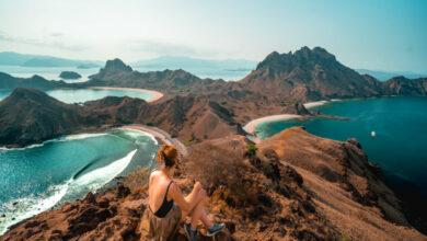 Photo of Una guía para visitar Komodo: todo para ver y hacer en Komodo Indonesia