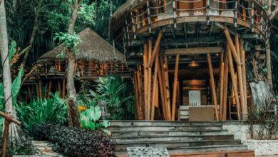 Photo of Viviendo en una casa del árbol en Nihi Sumba