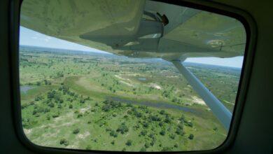 Photo of Por qué Botswana debería ser su próximo destino de safari