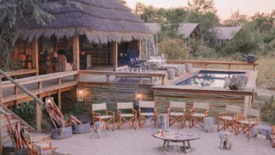 Photo of Cuánto presupuestar para un safari africano
