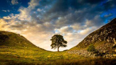 Photo of Las 12 mejores excursiones en el Parque Nacional de Northumberland