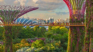 Photo of Las 10 mejores cosas para hacer en Singapur