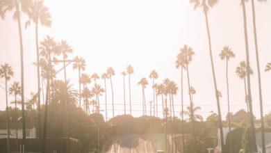 Photo of Tu guía de verano en Encinitas, California