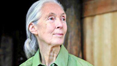 Photo of Los guardianes de la naturaleza: 10 famosos ecologistas que nos dan esperanza