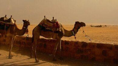 Photo of Cómo mantener el sentido del humor cuando se viaja