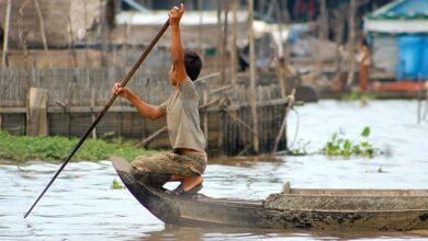 Photo of Camaleón jemer: cómo mezclarse con los habitantes de Camboya