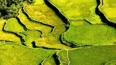 Photo of Antes de que desaparezcan: los paisajes afectados por el cambio climático