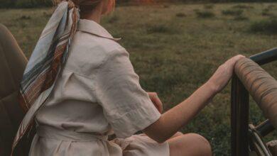 Photo of Una guía para principiantes de Safari