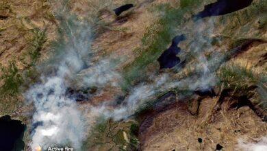 Photo of Cómo escapar de un incendio forestal: una guía de senderismo