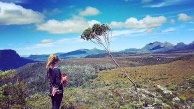 Photo of Senderismo por Overland Track en Tasmania
