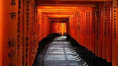 Photo of Guía de la ciudad de Kioto
